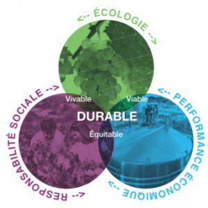 3piliers-developpement-durable